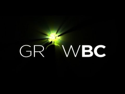 growbc---christmas-tree-recycling-with-progress-energy