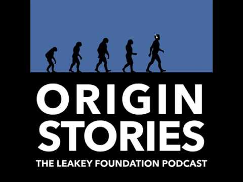 Episode 08: Being Human with Robert Sapolsky