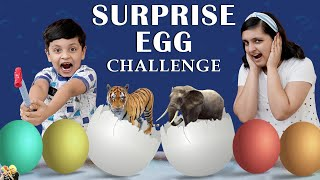 SURPRISE EGG CHALLENGE | Mystery Pot Challenge | Fun Game CDM in Lickables | Aayu and Pihu Show