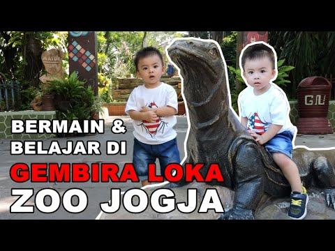 bermain-dan-belajar-di-gembira-loka-zoo-jogja-|-vlog-keluarga-3l-di-kebun-binatang-jogjakarta
