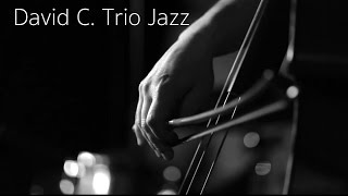 David C. Trio Jazz / Souvenirs d