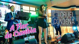 VIDEO: CRUEL CONDENA (Flor de María Hito)