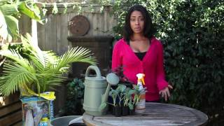 How to Kill Garden Weeds Without Poison : Around the Garden