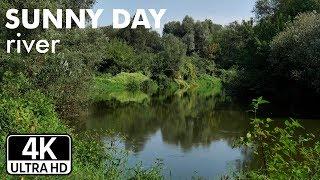 4K UHD   Солнечный день, река. Приятный фоновый шум созданный живой природой.