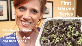 First Garden Series # 4 - Watering Seedlings & Planting Tomato & Basil Seeds