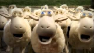 Рекламные ролики про овечек Serta. Все серии. thumbnail