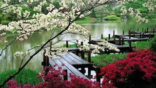 Beautiful Japanese Music *1: Relaxing Music, Soothing Music, Calming Music, Sleep Music