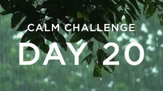 Calm Challenge | Day 20