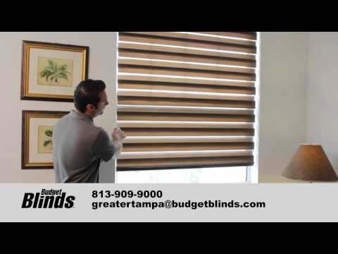 Window Blinds- Illusions Shades by Budget Blinds Tampa