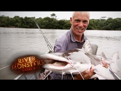 Catching An ENORMOUS Piraiba | PIRAIBA | River Monsters