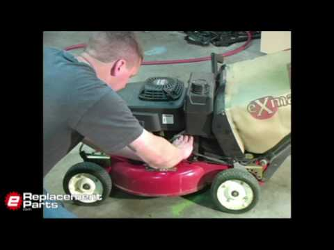 Lawn Mower Oil