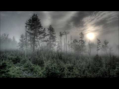 Haunted Forest Plagued By Satanic Cults And Other Dark Entities