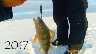 Зимняя рыбалка 2017 о Аткуль