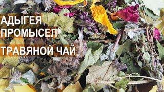 Травяной чай. Состав, сбор, сбыт. Раиса Думарева, Республика Адыгея