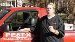 Pest-X Exterminating | Winston-Salem | Termite Remediation