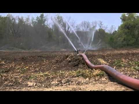Silver Queen Farm: Irrigation