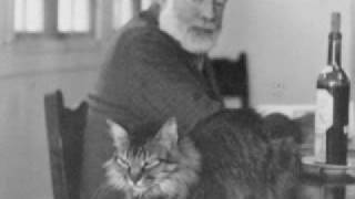 Ernest Hemingway had a  6 toed cat