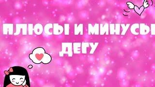 Плюсы и минусы дегу)
