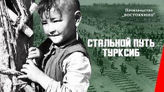 Стальной путь (Турксиб) (1929) документальный фильм