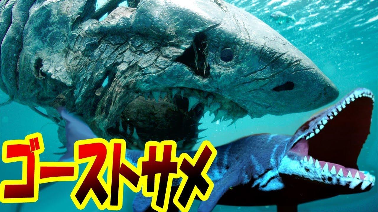 ラッシー 魚の ゲーム
