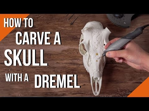 How To Carve A Skull With A Dremel Rotary Tool