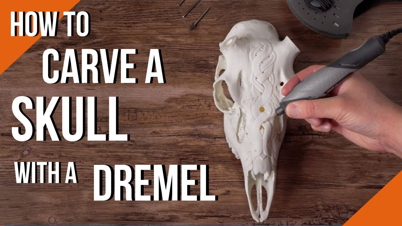 How To Carve A Deer Skull With A Dremel Rotary Tool Youtube