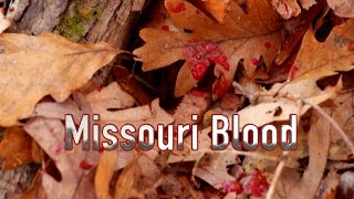 Missouri Blood | MISSOURI PUBLIC LAND | Behind the Bow