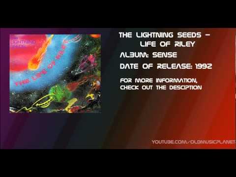 Lightning Seeds - Life of Riley