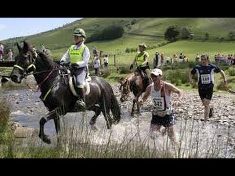 The Man V Horse Marathon