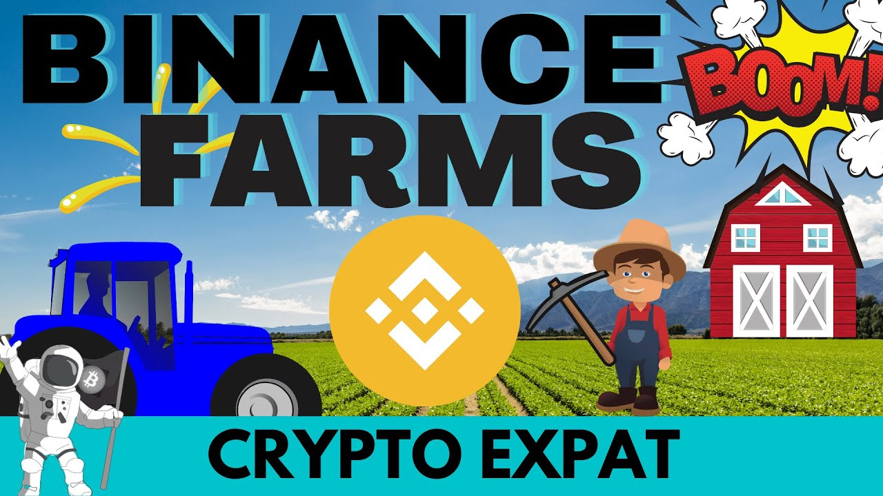BSC FARMS Are Booming| Make Gains Without Expensive Gas Fees |  Coin Profits 2X, 4X, 5X