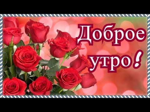 Доброе утречко! Красивое видео с добрым утром! Хорошего дня!