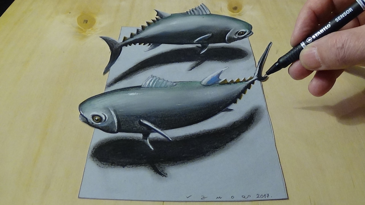 How to draw tuna fish drawing 3d fish illusion on paper by vamos youtube