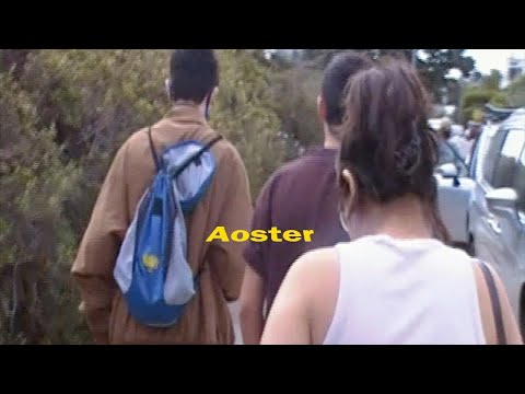 Aoster - Youth is Wasted on Youth (Official Music Video)