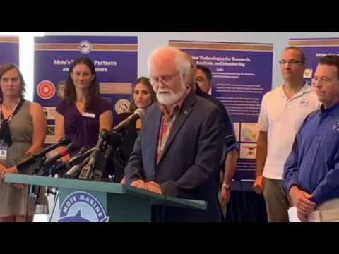 Mote announces state grant, clay testing to combat red tide