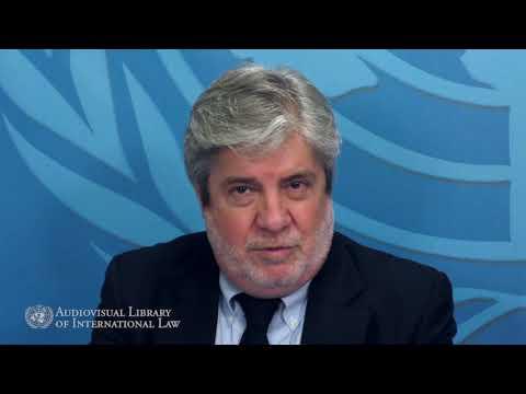 Jean Michel Arrighi - L'Organisation des États Américains