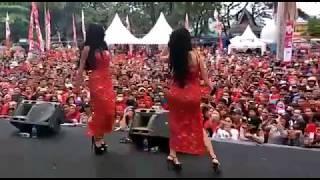 Download Video Detik-Detik PayuDara Duo Serigala Menyembul Keluar MP3 3GP MP4