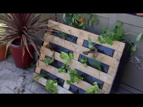 Full download comment faire un potager vertical avec l - Jardiniere en palette de bois ...