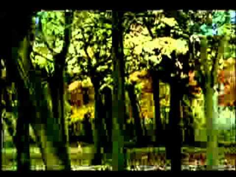 el-viaje-definitivo-...-poema-...juan-ramon-jimenez-..voz..miki