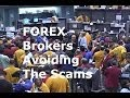 Forex Broker Scams Exposed and the Top Regulated FX  Brokers Reviewed