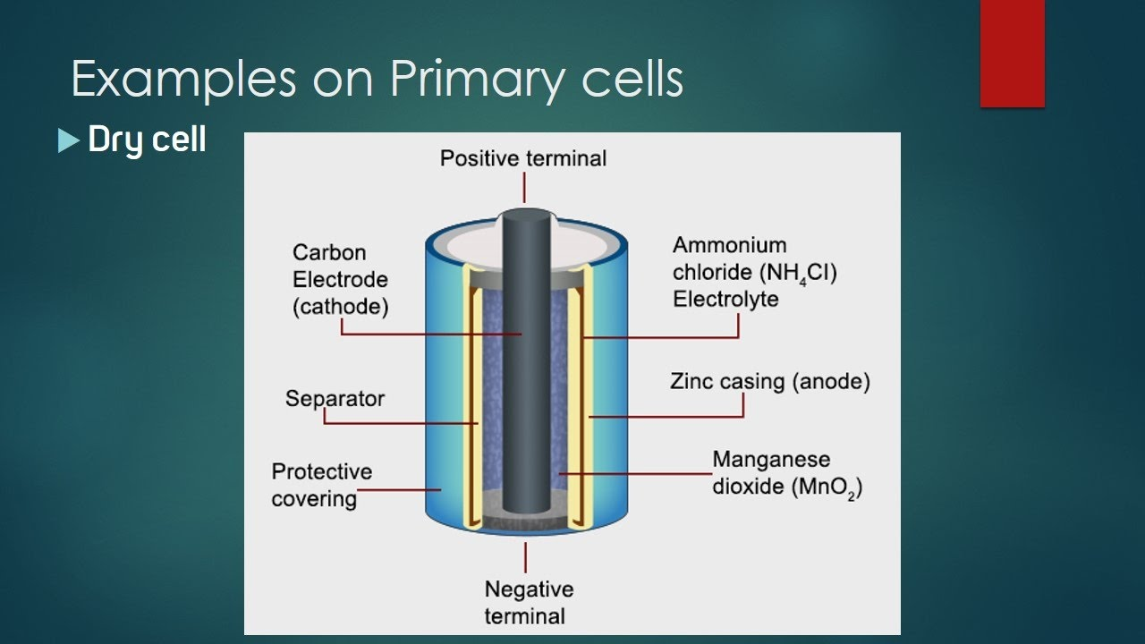 electrochemistry primary cells dry cell applications on Figure of a Dry Cell electrochemistry primary cells dry cell applications on galvanic cell