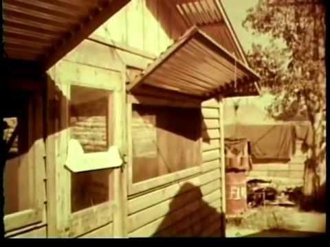 Staff Film Report 66-43A Vietnam September And October 1966