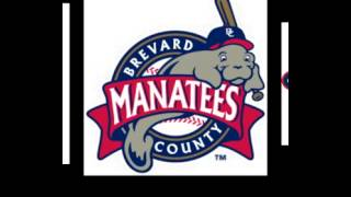 Minor League Baseball Logos.