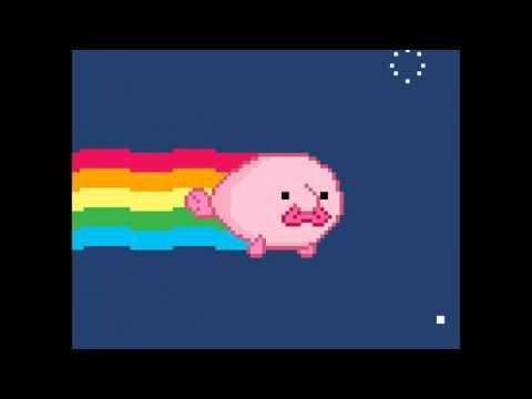 Blob Fish Nyan Cat