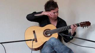 Wasted Years (Iron Maiden) Acoustic - Thomas Zwijsen