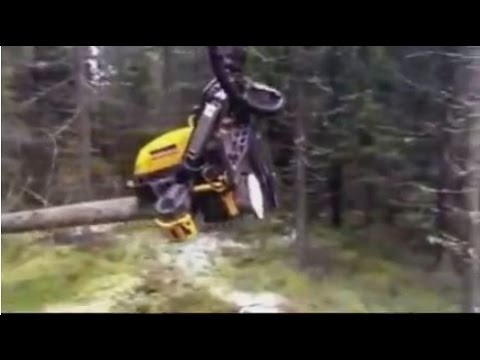 The amazing machine for cutting tree, Auto logging machine, what a machine !