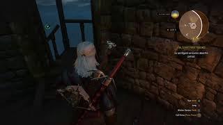 Witcher 3: Ghost Wyvern