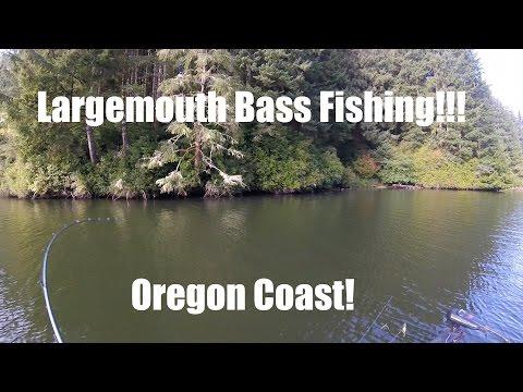 Largemouth Bass Fishing: Tahkenitch Lake Oregon Coast!!!