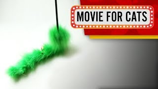 MOVIE FOR CATS - 😺 GREEN SURPISE (Entertainment Video for Cats to Watch)