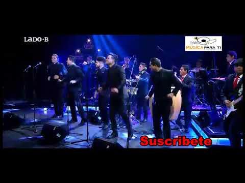 Gran Orquesta Internacional en Vivo   Pisao