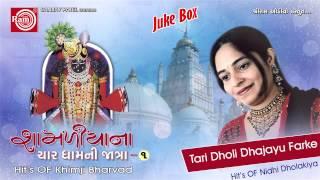 Tari Dholi Dhajayu Farke |Shamlaji Bhajan |Nidhi Dholakiya